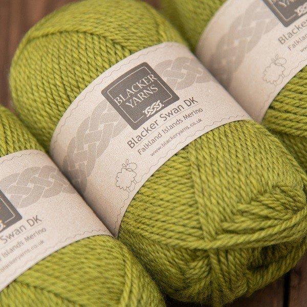 Blacker Swan over-dyed Balsam Bog olive DK knitting yarn
