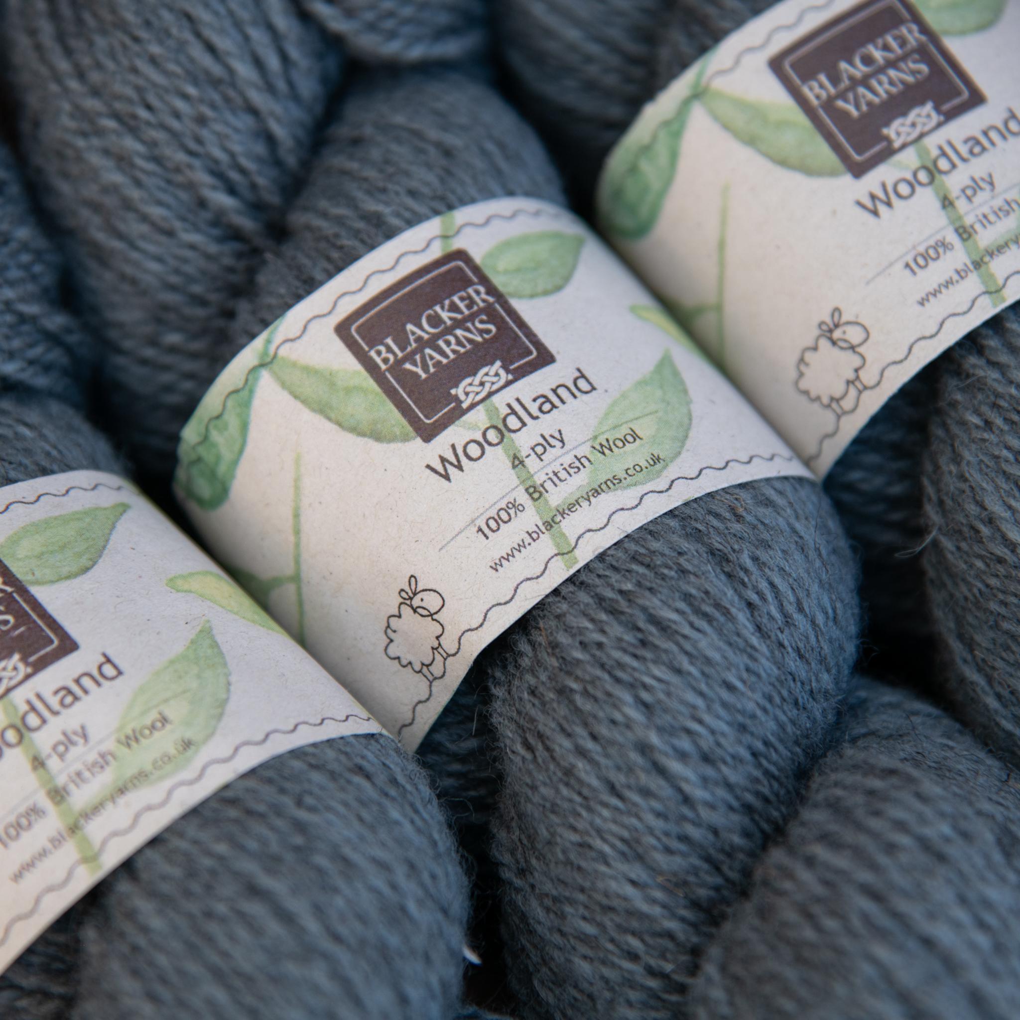 Blackeryarn Woodland 4 Ply Frost - Blacker Yarns