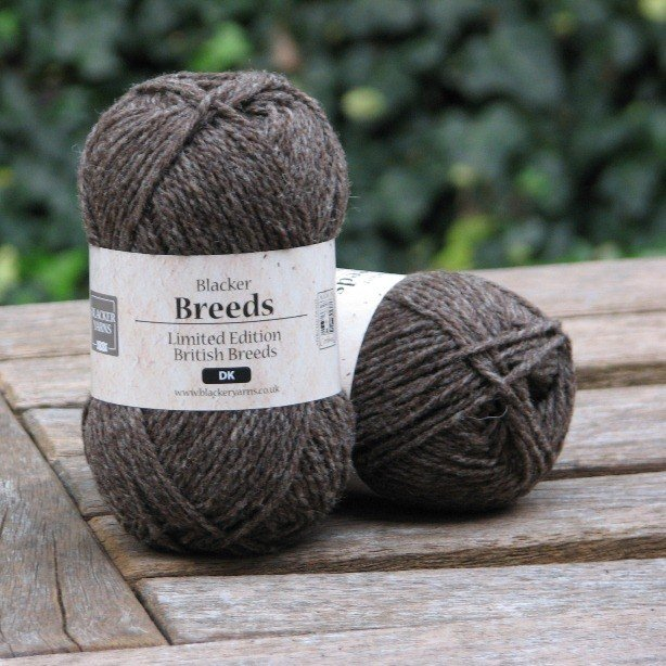 Coloured Ryeland DK - Blacker Yarns