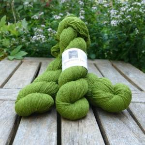 Cornish Garden dyed Heligan green 3-ply yarn