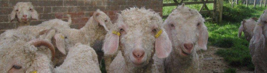 Mohair Blend British Knitting Yarn