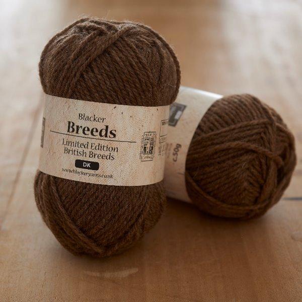 Pure Castlemilk Moorit DK knitting yarn